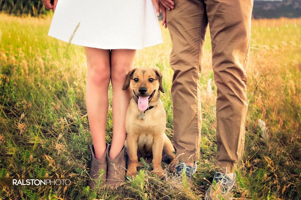Parker Colorado Photography Family Portraits Boulder 01